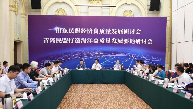 山东民盟经济高质量发展研讨会在青岛召开