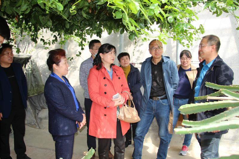 民盟省委赴新泰参加党盟共建科技服务活动